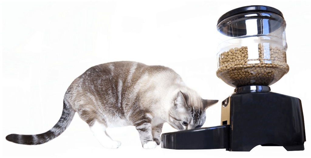 mota-pet-feeder2