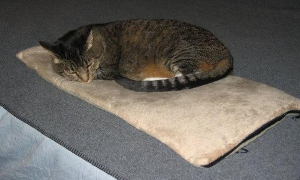 K&h-cat-beds7