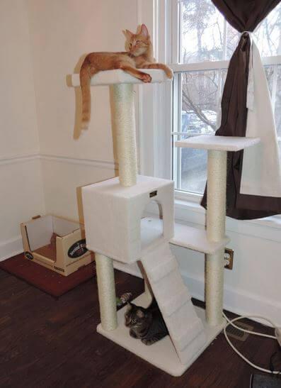 armarkat-cat-tree-4
