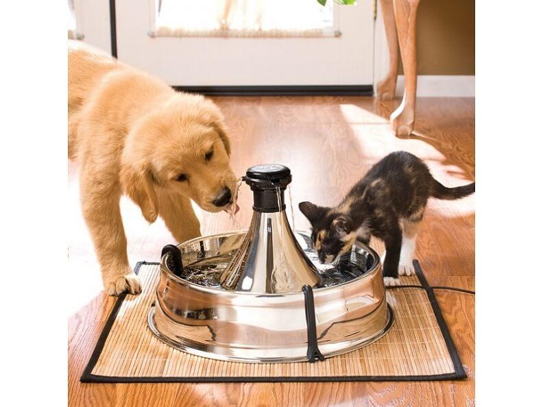 PetSafe-Drinkwell-water-fountain5