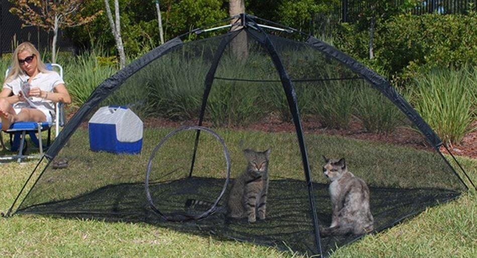 ABO-cat-enclosure-2