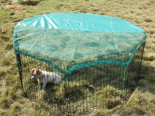 BestPet-cat-enclosure-3