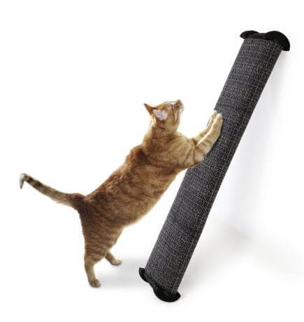 Omega-Paw-Cat-Scratchers-4