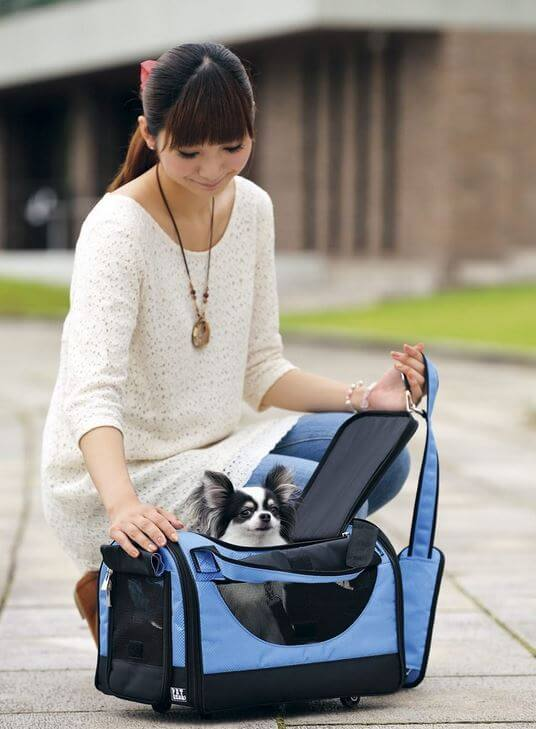Pet-Gear-cat-carriers-8