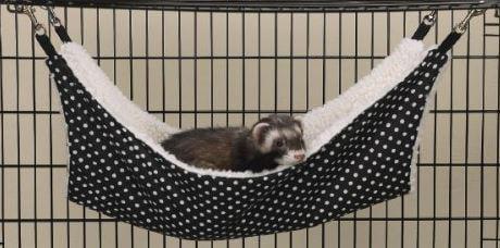 cat-hammock-3