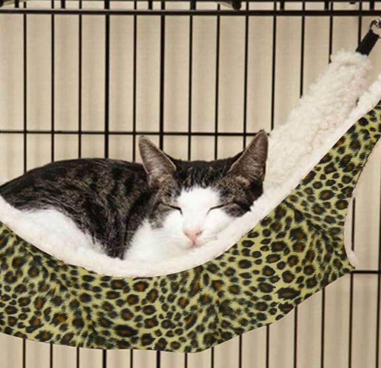cat-hammock-6