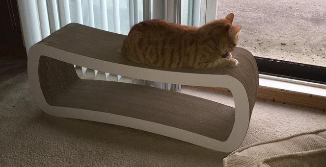 Petfusion Cat Scratcher 8